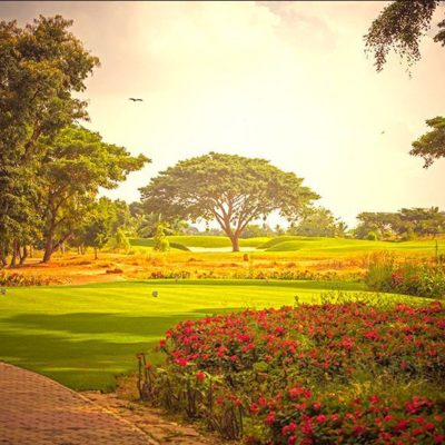 prestige-golfshire-golf-view